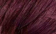 blowout-burgundy
